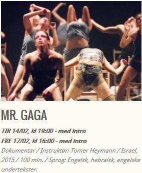 MR.GAGA