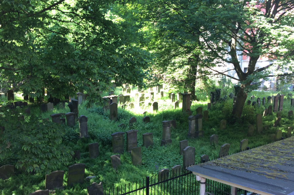 Begravelsespladssen i Møllegade set i fugleperspektiv